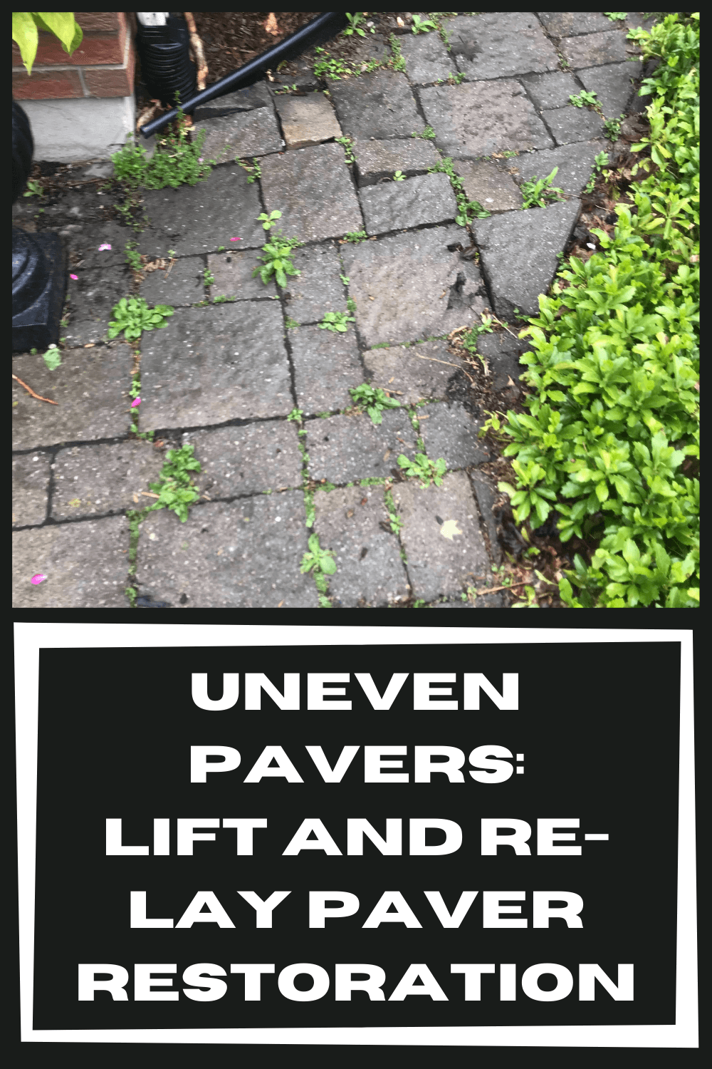 uneven-pavers-lift-and-re-lay-paver-restoration